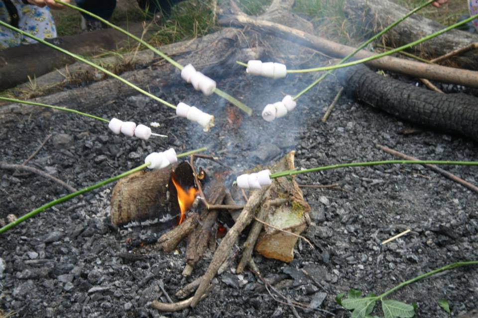 Marshmallow toasting and camp fire